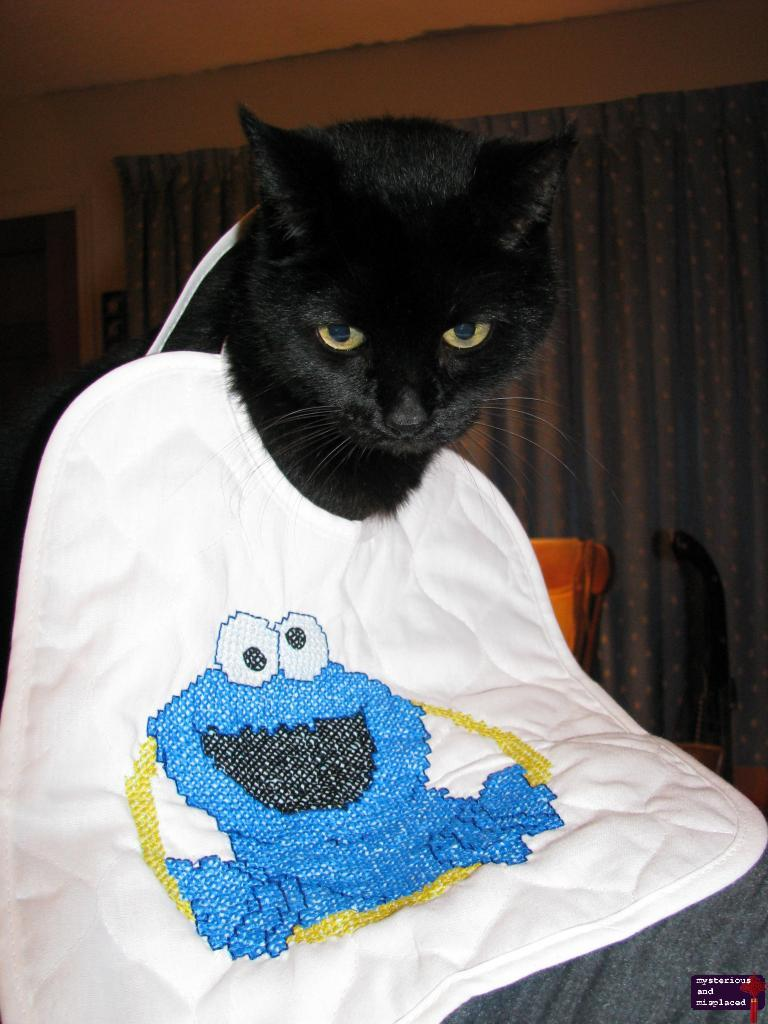 Morgan and Cookie Monster