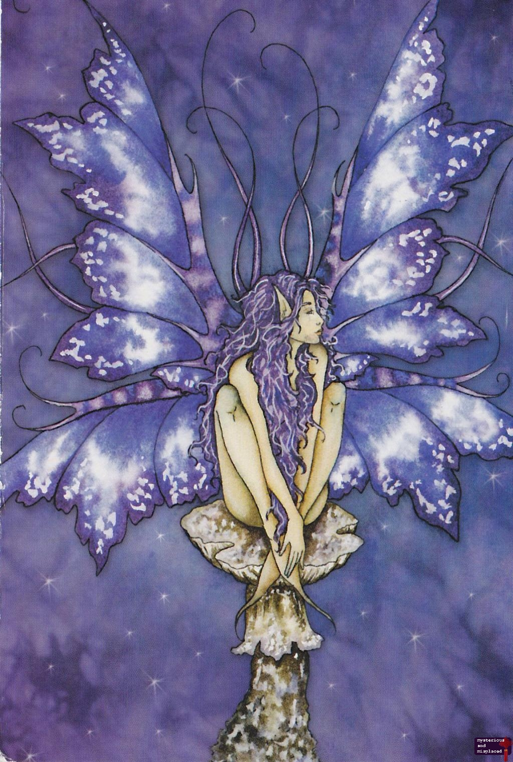 Purple Faerie - America, Amy Brown, Faerie, postcards ...